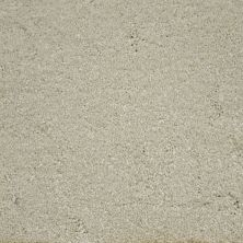 Stainmaster Petprotect Stainmaster – Petprotect BICHON Soft Cameo A4681-17185