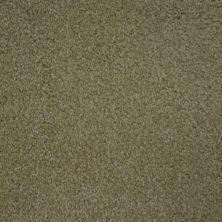 Stainmaster Petprotect Stainmaster – Petprotect BICHON Bistre Grey A4681-74299