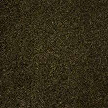 Stainmaster Petprotect Stainmaster – Petprotect BICHON Taboo Brown A4681-76833