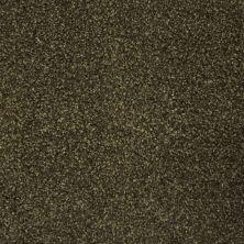 Stainmaster Petprotect Stainmaster – Petprotect BICHON Smoky Brown A4681-77917
