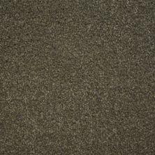 Stainmaster Petprotect Stainmaster – Petprotect BICHON North American Grey A4681-89832