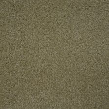 Stainmaster Petprotect Stainmaster – Petprotect COLLIE Bistre Grey A4683-74299