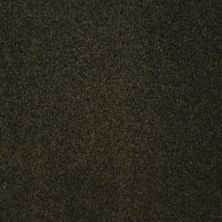 Stainmaster Petprotect Stainmaster – Petprotect COLLIE Dark Mineral Grey A4683-84221