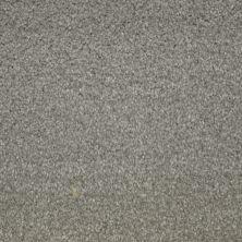 Stainmaster Petprotect Stainmaster – Petprotect COLLIE Arrowhead A4683-84657