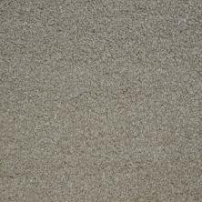 Stainmaster Petprotect Stainmaster – Petprotect TERRIER London Beige A4685-17061
