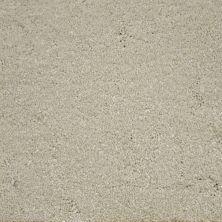 Stainmaster Petprotect Stainmaster – Petprotect TERRIER Soft Cameo A4685-17185