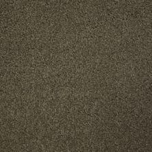 Stainmaster Petprotect Stainmaster – Petprotect TERRIER Burnt Leaf A4685-18926