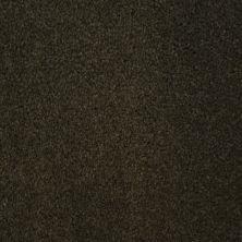 Stainmaster Petprotect Stainmaster – Petprotect TERRIER Dark Mineral Grey A4685-84221
