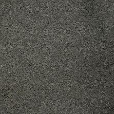 Stainmaster Petprotect Stainmaster – Petprotect TERRIER Metallic Grey A4685-89056