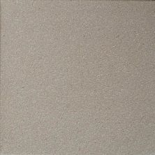 Daltile Quarry Tile Arid Gray (2) 0Q42661P