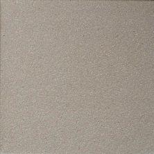 Daltile Quarry Tile Arid Gray (2) 0Q42661P