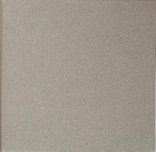 Daltile Quarry Textures Ashen Gray (2) Gray/Black 0T03881A