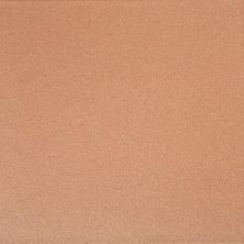 Daltile Quarry Tile Golden Dune (2) Gold/Yellow 0Q43661A