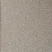 Daltile Quarry Tile Arid Flash (2) Gray/Black 0Q48661A