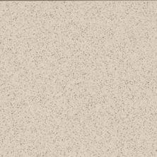 Daltile Porcealto Bianco Alpi (1) CD0512121L
