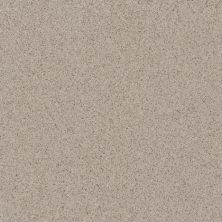 Daltile Porcealto Grigio Granite (1) Gray/Black CD40881P