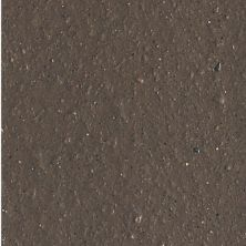 Daltile Quarry Textures Chocolate (2) Brown 0T11881A
