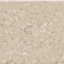 Daltile Keystones Urban Putty  Speckle (1) D2012HEXMS1P