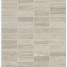 Daltile Articulo Column Grey Gray/Black AR0913MS1P2