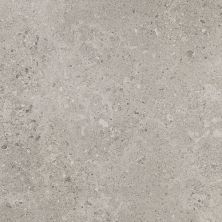 Daltile Dignitary Superior Taupe DR0812241T