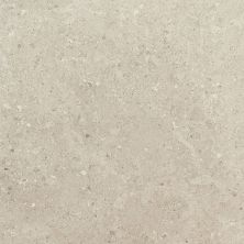 Daltile Dignitary Notable Beige DR0912241T