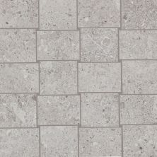 Daltile Dignitary Eminence Grey DR101212MS1P