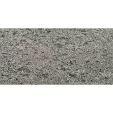 Daltile Granite Collection Silver Pearl (flamed) Gray/Black G25912241M