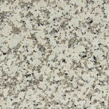 Daltile Granite Collection Chloe White (polished) White/Cream G33924241L