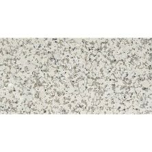 Daltile Granite Collection Chloe White (flamed) White/Cream G33912241M