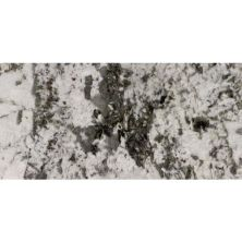 Daltile Granite  Natural Stone Slab Adonis White White/Cream G453SLAB11/41L