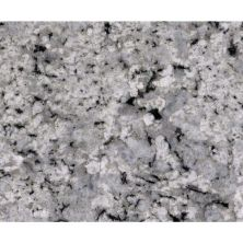 Daltile Granite  Natural Stone Slab Palladium White Gray/Black G841SLAB11/41L