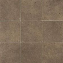 Daltile Industrial Park Chestnut Brown IP0812121P6