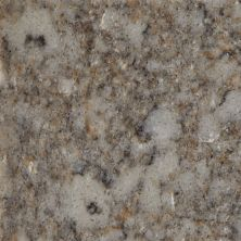 Daltile Nature Flecks Grey Nimbus NQ57SLAB11/4X1L