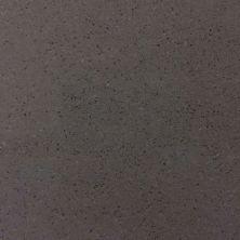 Daltile Micro Flecks Concrete Gray Gray/Black NQ6512121L