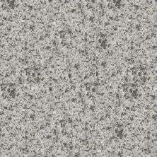 Daltile Geo Flecks Riverbank NQ93SLAB3/4X1L