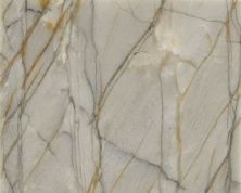 Daltile Natural Quartzite Antigua Quartzite Q742SLAB11/41L