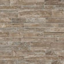 Daltile Season Wood Orchard Grey SW018481P