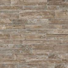 Daltile Season Wood Orchard Grey SW016481P