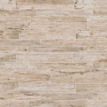 Daltile Season Wood Winter Spruce SW0212481P