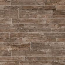 Daltile Season Wood Autumn Wood SW036481P