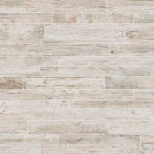 Daltile Season Wood Snow Pine SW0524481P