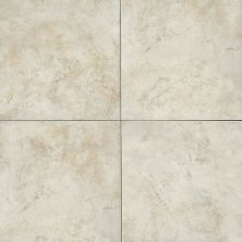 Daltile Arena Fawn Beige/Taupe AR0216161PV