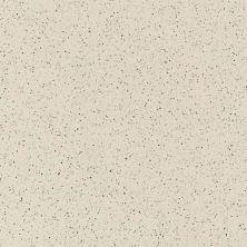 Daltile Porcealto Fuori di Bianco (1) CD39881P