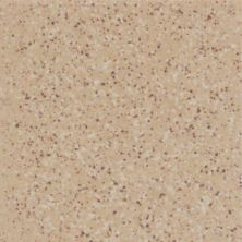 Daltile Keystones Elemental Tan Speckle (1) D17522MS1P