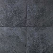 Daltile Continental Slate Asian Black CS53661P