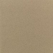 Daltile Quarry Textures Sahara Sand (2) Brown 0T08881A