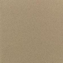 Daltile Quarry Textures Sahara Sand (2) 0T08881A