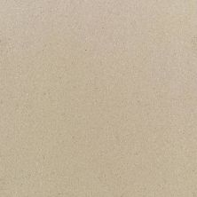 Daltile Quarry Textures Desert Tan (2) 0T09881A
