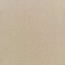 Daltile Quarry Textures Desert Tan (2) 0T09661P