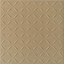 Daltile Suretread And Pavers Golden Brown Suretread 0Q75661PB